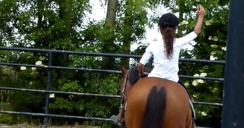 Leren met PaardenKracht